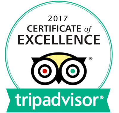 Punta Cana Daily - TripAdvisor - Certificate Of Excellence 2017