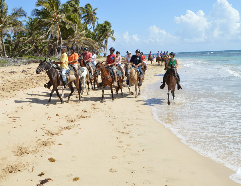 Punta Cana Daily - Excursions - Horseback Riding