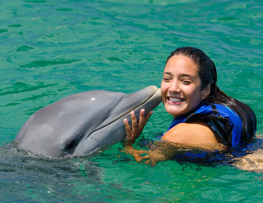 Punta Cana Daily - Excursions - Dolphins - 01