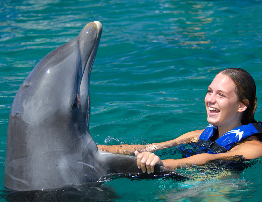 Punta Cana Daily - Excursions - Dolphins - 02