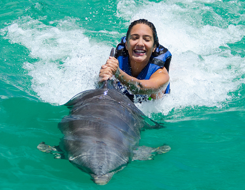 Punta Cana Daily - Excursions - Dolphins - 05