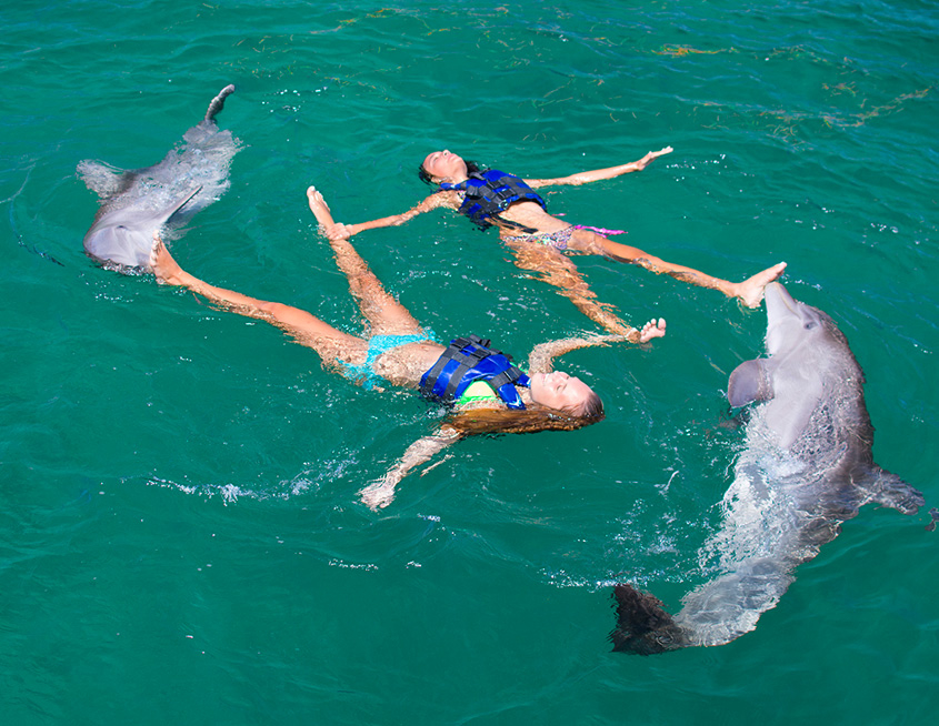 Punta Cana Daily - Excursions - Dolphins - 06