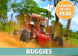 Punta Cana Daily - Excursions - Buggies
