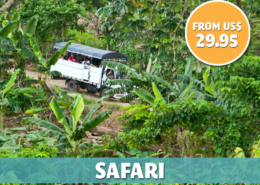 Punta Cana Daily - Excursions - Safari